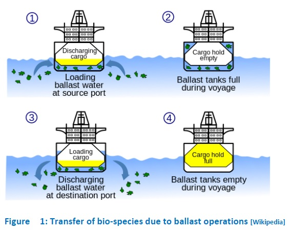 transfer of bio species due ballast operations
